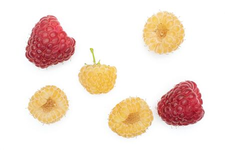 Group of four whole fresh golden hymalayan raspberry with two red berries flatlay isolated on white background