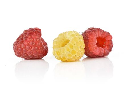 One whole fresh golden hymalayan raspberry with two red berries isolated on white background