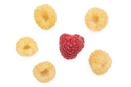 Group of five whole fresh golden hymalayan raspberry with one red berry flatlay isolated on white background