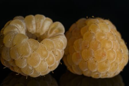 Closeup of two whole fresh golden hymalayan raspberry isolated on black glass