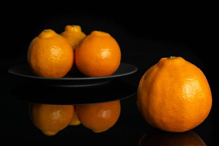 Group of four whole fresh orange tangelo minneola on gray ceramic plate isolated on black glass Banque d'images - 129474276