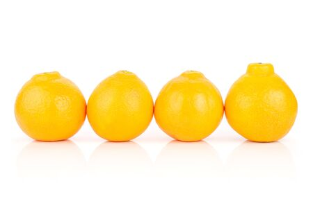 Group of four whole fresh orange tangelo minneola isolated on white background Banque d'images - 129473903