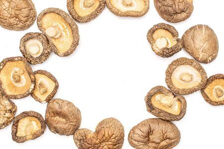 Lot of whole dry mushroom shiitake copyspace middle flatlay isolated on white background Reklamní fotografie