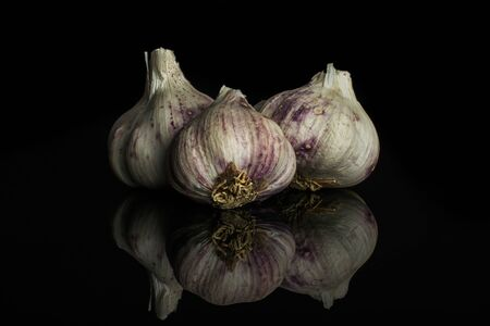 Group of three whole organic white garlic allium sativum isolated on black glass Stock Photo