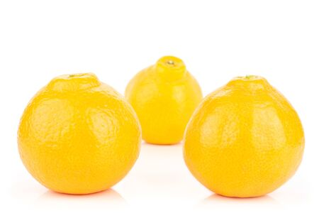 Group of three whole fresh orange tangelo minneola isolated on white background Banque d'images - 129474313