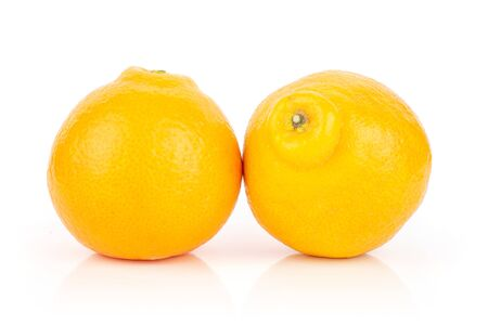 Group of two whole fresh orange tangelo minneola isolated on white background