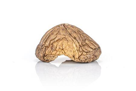 One whole dry mushroom shiitake isolated on white background Reklamní fotografie