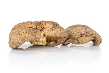 Group of two whole brown dry mushroom shiitake isolated on white background Reklamní fotografie