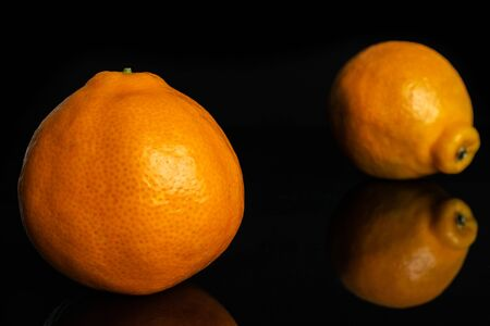 Group of two whole fresh orange tangelo minneola isolated on black glass Banque d'images - 129475180