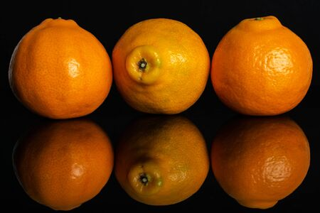 Group of three whole fresh orange tangelo minneola isolated on black glass Banque d'images - 129475318