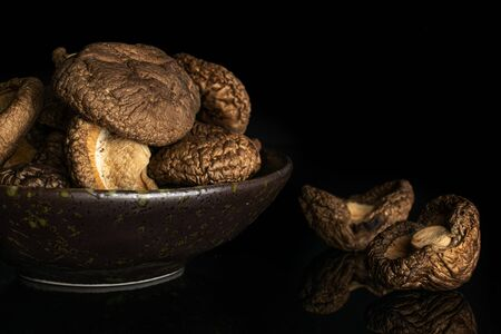 Lot of whole brown dry mushroom shiitake on grey ceramic plate isolated on black glass