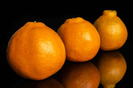 Group of three whole fresh orange tangelo minneola isolated on black glass Banque d'images - 129475338