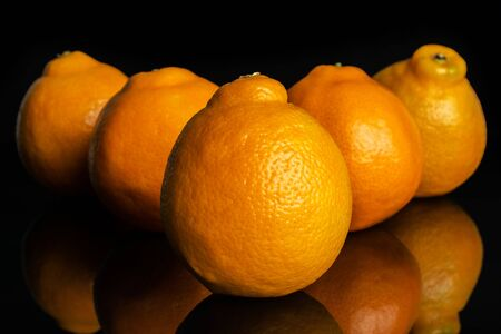 Group of five whole fresh orange tangelo minneola isolated on black glass Banque d'images - 129475372