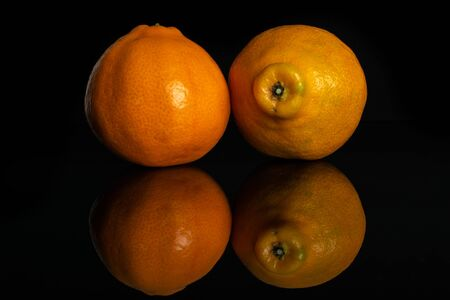 Group of two whole fresh orange tangelo minneola isolated on black glass Banque d'images - 129475480