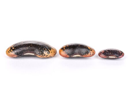 Group of three whole stained purple bean isolated on white background