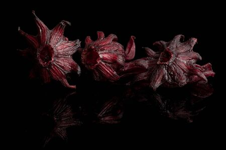 Group of three whole sweet red candied hibiscus isolated on black glass