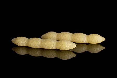 Group of two whole uncooked pasta cavatelli isolated on black glass