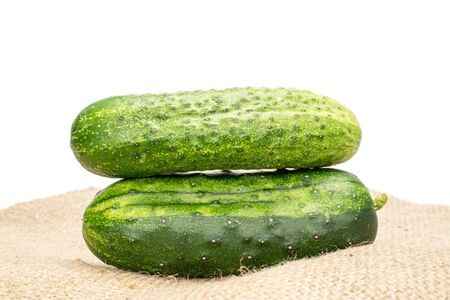 Group of two whole fresh green pickling cucumber on jute cloth isolated on white background