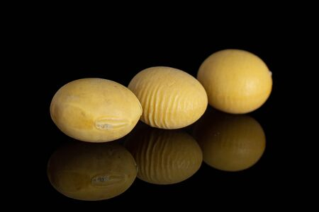 Group of three whole raw yellow soya bean in row isolated on black glass Stock Photo