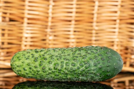 One whole ripe fresh pickling cucumber with braided rattan behind
