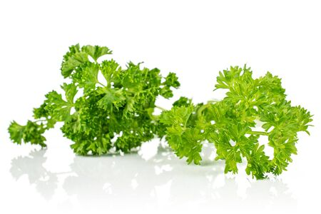 Group of two whole fresh green parsley isolated on white background