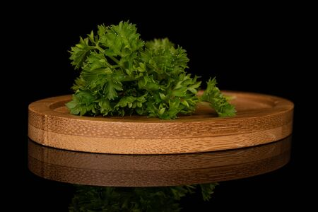 One whole fresh green parsley on round bamboo coaster isolated on black glass