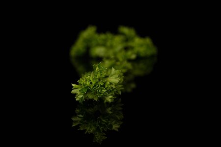 Lot of pieces of fresh green parsley isolated on black glass