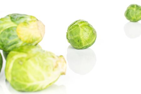Group of four whole arranged fresh green brussels sprout isolated on white background