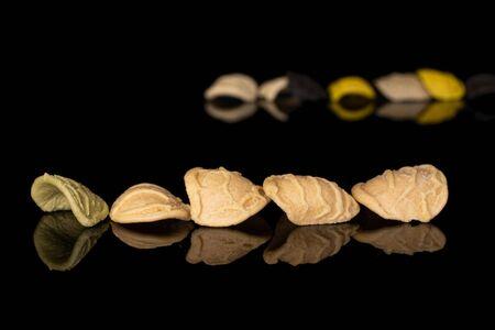 Lot of whole colorful pasta orecchiette isolated on black glass Banco de Imagens
