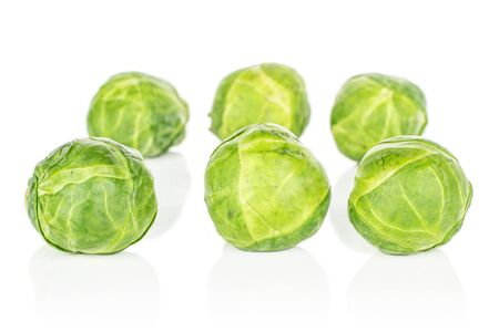Group of six whole fresh green brussels sprout in row isolated on white background