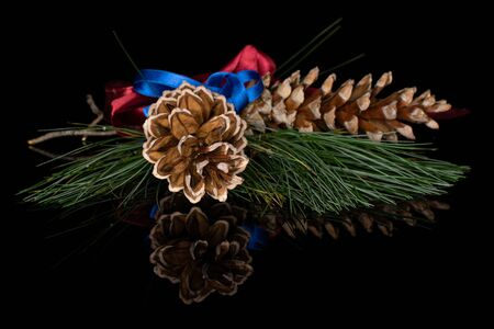 Group of two whole forest brown pine cone with red ribbon and blue ribbon isolated on black glass