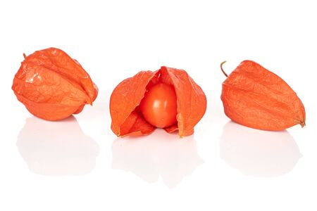 Group of three whole fresh orange physalis isolated on white background