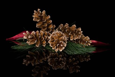 Group of five whole forest brown pine cone with red ribbon isolated on black glass 版權商用圖片