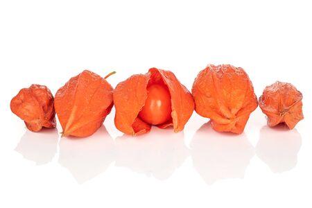 Group of five whole fresh orange physalis isolated on white background