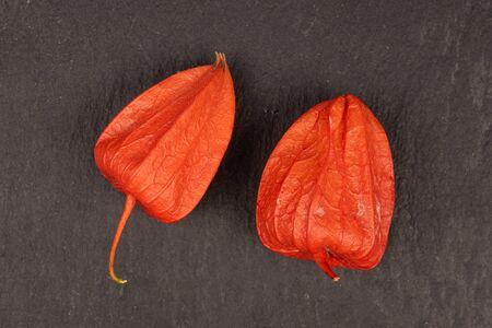 Group of two whole fresh orange physalis flatlay on grey stone Stock Photo