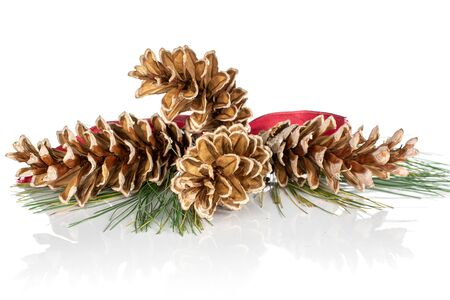 Group of four whole forest brown pine cone with red ribbon isolated on white background Zdjęcie Seryjne