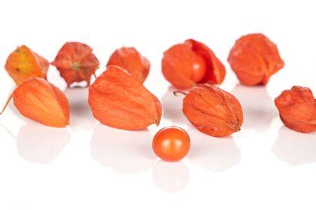 Group of ten whole fresh orange physalis isolated on white background