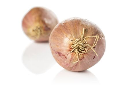 Group of two whole fresh brown shallot front focus isolated on white background