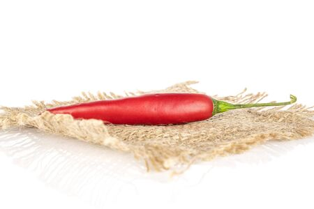 One whole hot red chili cayenne with jute fabric isolated on white background