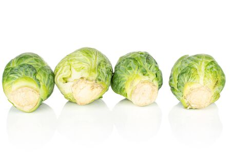 Group of four whole fresh green brussels sprout isolated on white background