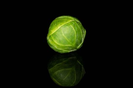 One whole fresh green brussels sprout isolated on black glass