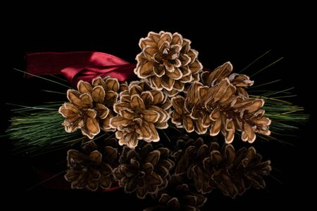 Group of four whole forest brown pine cone with red ribbon isolated on black glass