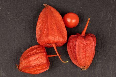 Group of four whole fresh orange physalis flatlay on grey stone Zdjęcie Seryjne