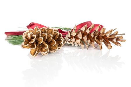 Group of two whole forest brown pine cone with red ribbon isolated on white background