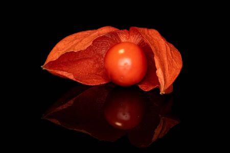 One whole fresh orange physalis isolated on black glass Stock Photo