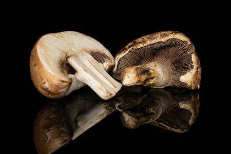 Group of two halves of fresh brown mushroom champignon isolated on black glass