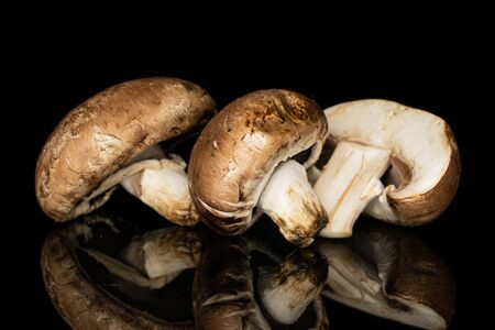 Group of two whole one half of fresh brown mushroom champignon isolated on black glass