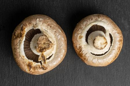 Group of two whole fresh brown mushroom champignon flatlay on grey stone Stok Fotoğraf
