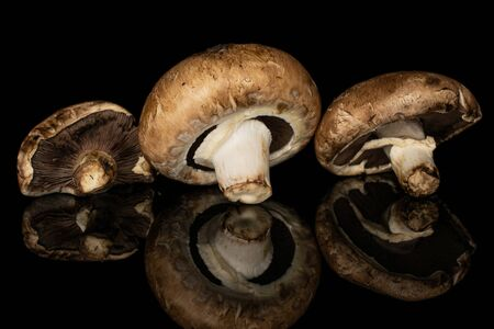 Group of three whole fresh brown mushroom champignon isolated on black glass Stok Fotoğraf