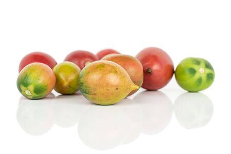 Group of nine whole fresh tomato de barao isolated on white background Stok Fotoğraf